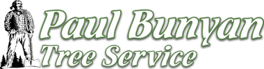 Paul Bunyan Tree Service
